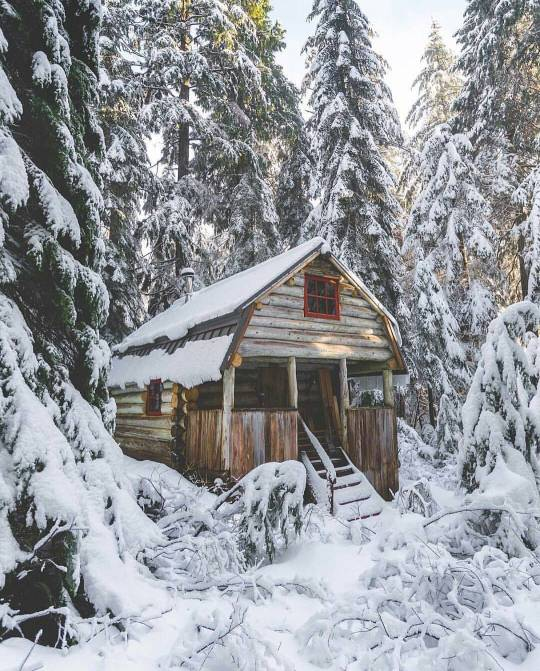 cabin in deep snow