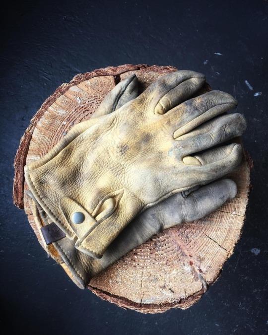 leather work gloves on wood stump