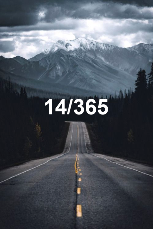 day 14 of the year 2019