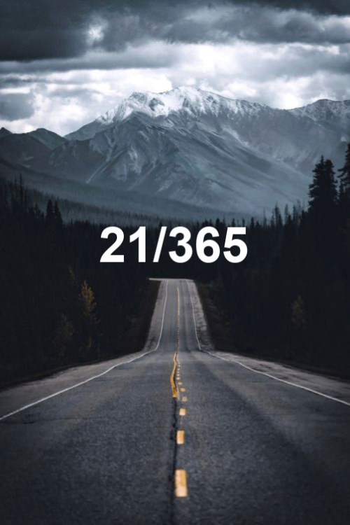 day 21 of the year 2019