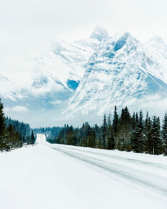 snow covered mountain and road