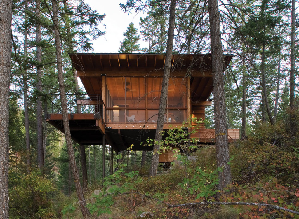 small elevated cabin in the woods