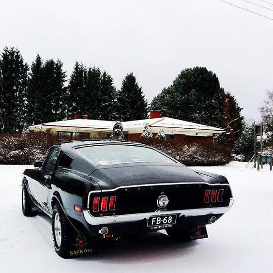 ford mustang in the snow