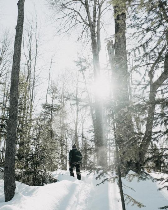 man walking through woods in the snow