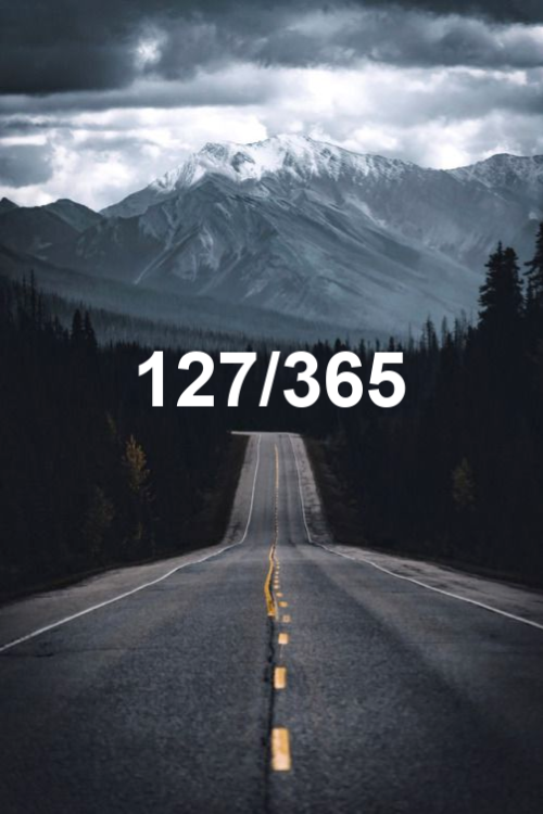 day 127 of the year 2019