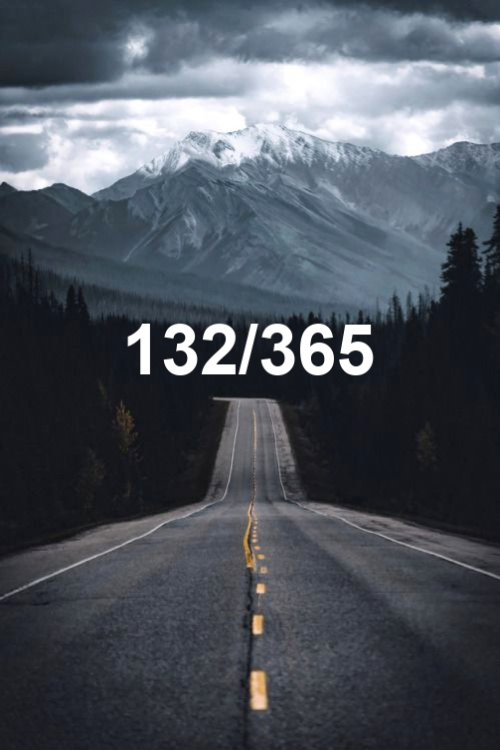 day 132 of the year 2019