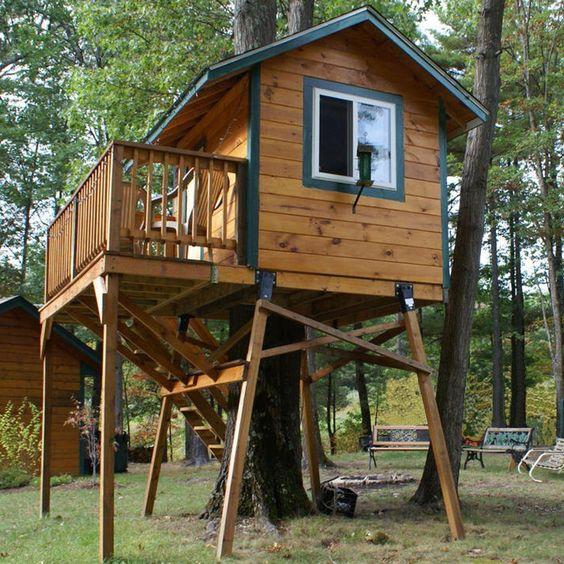 basic tree house