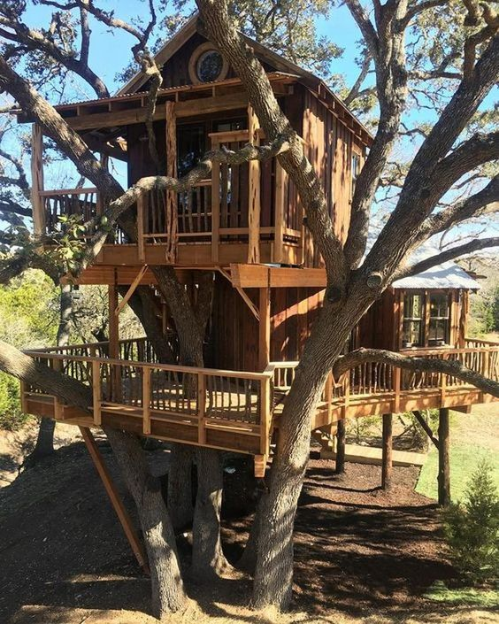 masculine treehouse