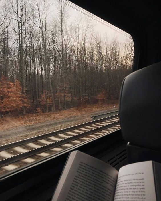 reading with scenery from train