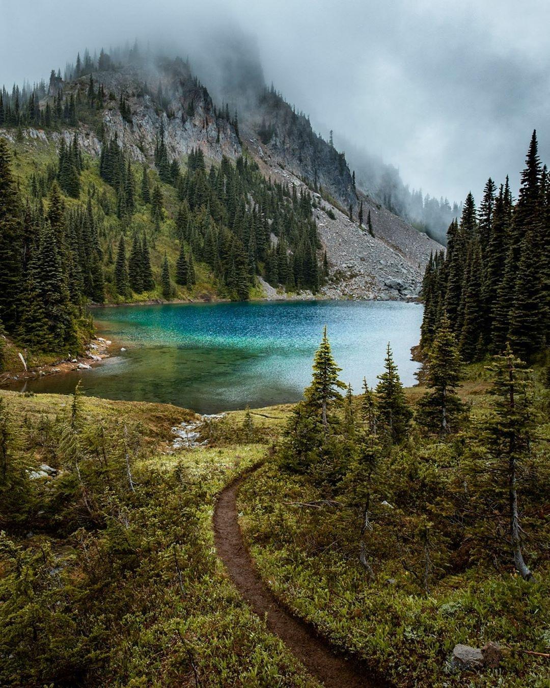 Ranier National Park