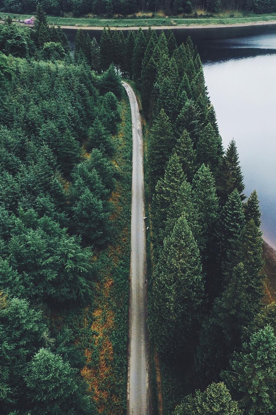 pnw road
