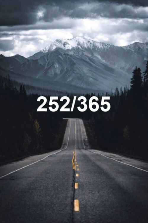 today is day 252 of the year 2019