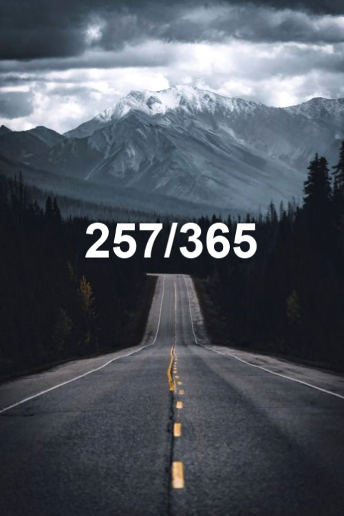today is day 257 of the year 2019