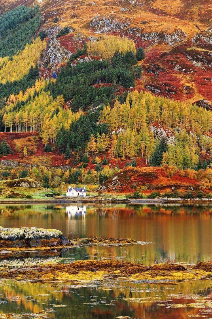 Fall - Scottish Highlands