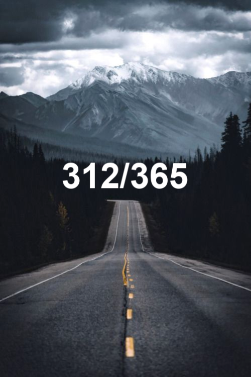 today is day 312 of the year 2019