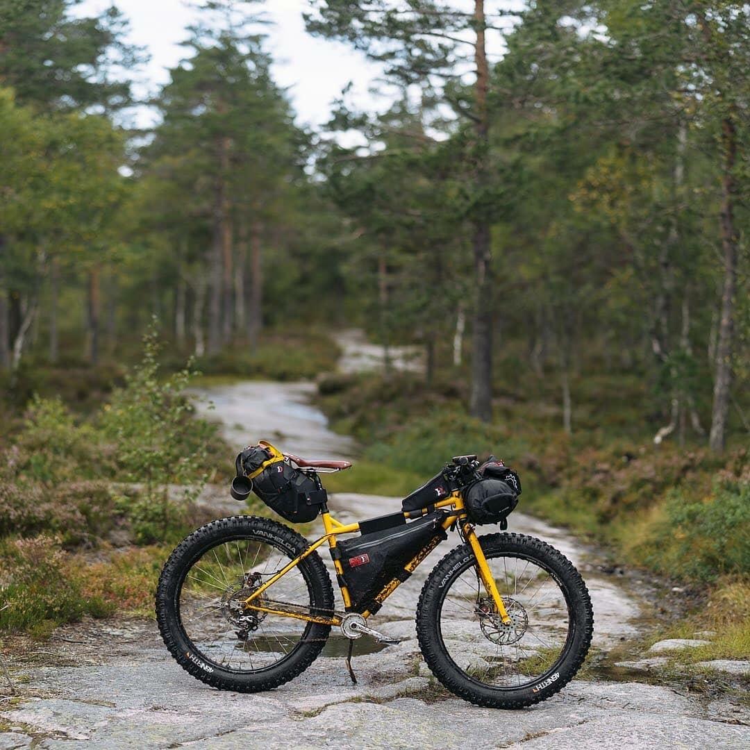 yellow fat tire mountain bike in the woods
