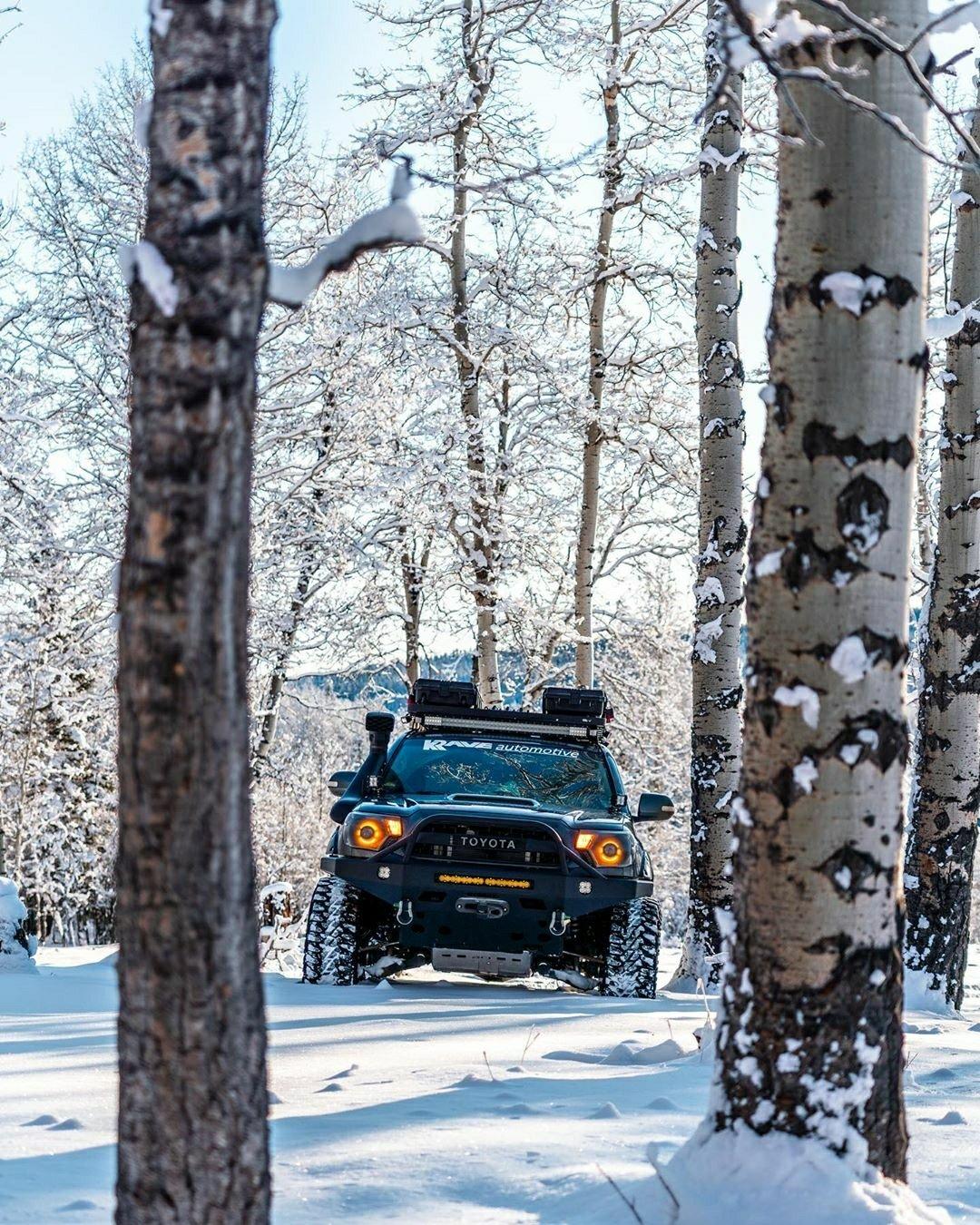 toyota truck in snowy woods