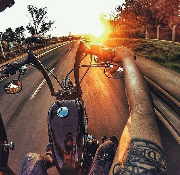 harley chopper sunset