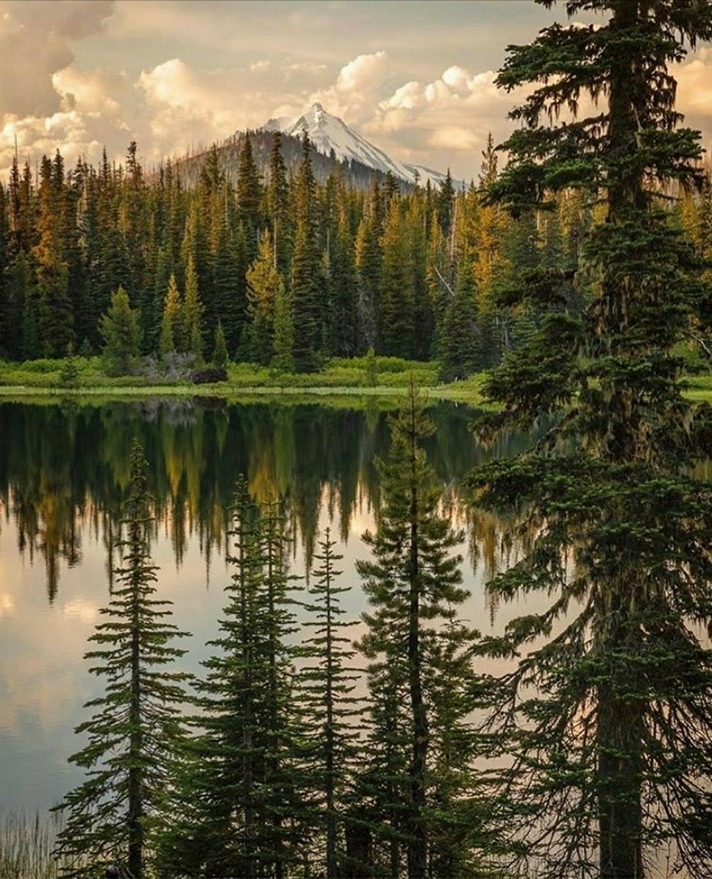 Mount Jefferson Wilderness