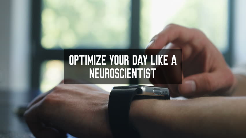 Optimize Your Day Like A Neuroscientist